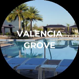 Valencia Port St Lucie Valencia Grove Search