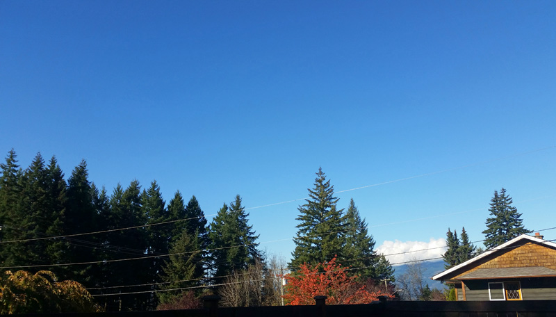 Honestly, its Sunny and Warm in Port Alberni