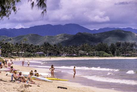 Kailua Beachgoers