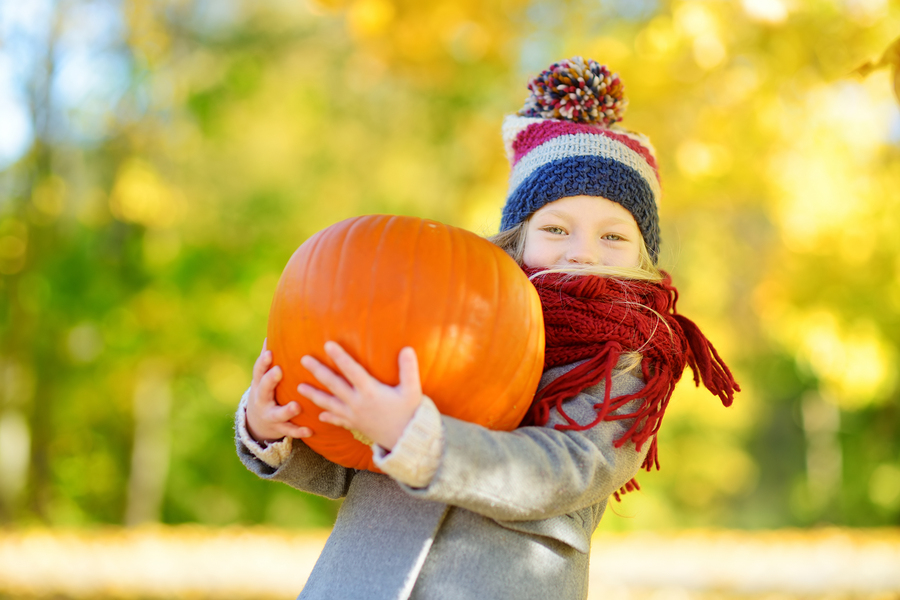 Celebrate autumn near Monroe homes at the harvest festival and zombie run.