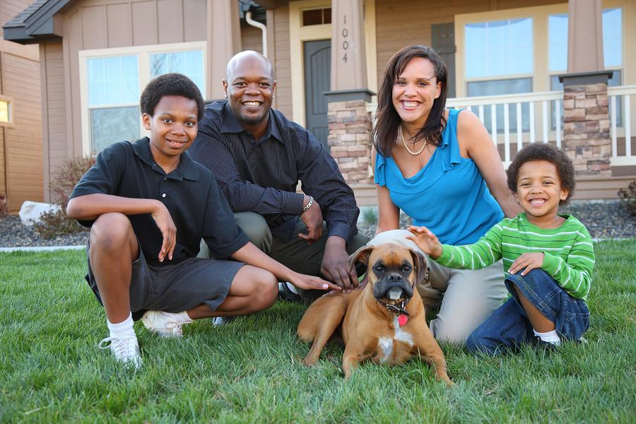 Get dog training on Lake Stevens property.
