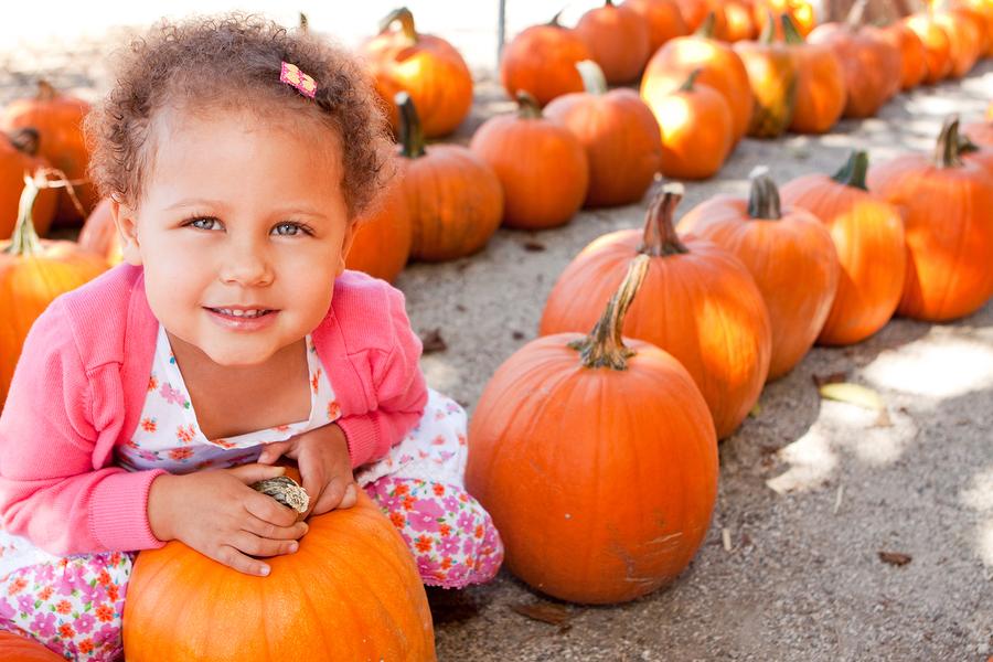 Get pumpkins grown on Snohomish real estate.