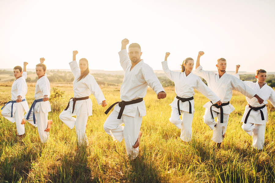 Learn martial arts on Monroe real estate.