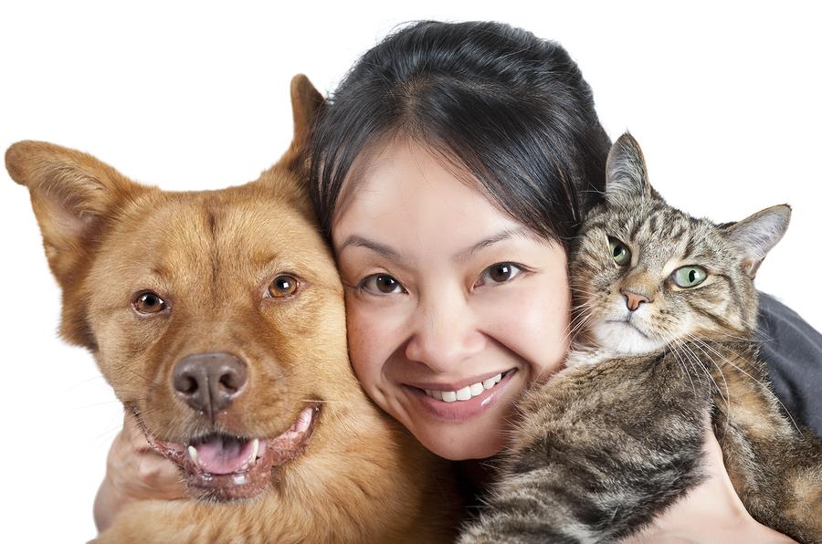 Take pets living in Lake Stevens to Lux Pet Salon.