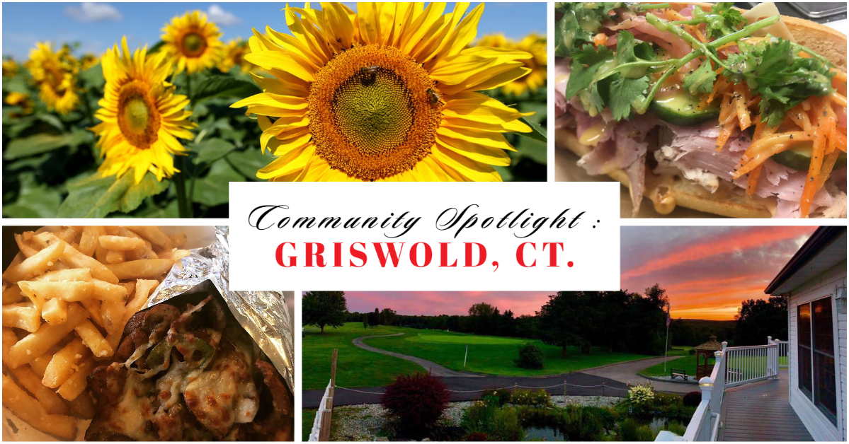 community spotlight griswold