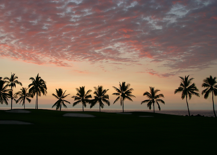 Enjoy living in Palm Beach and playing golf.