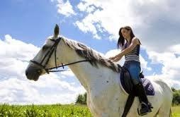 Castle Rock Equestrian