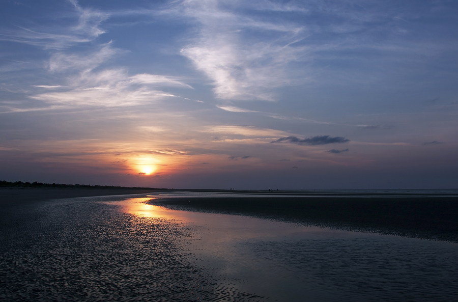Search for an Isle of Palms home and Isle of Palms real estate.