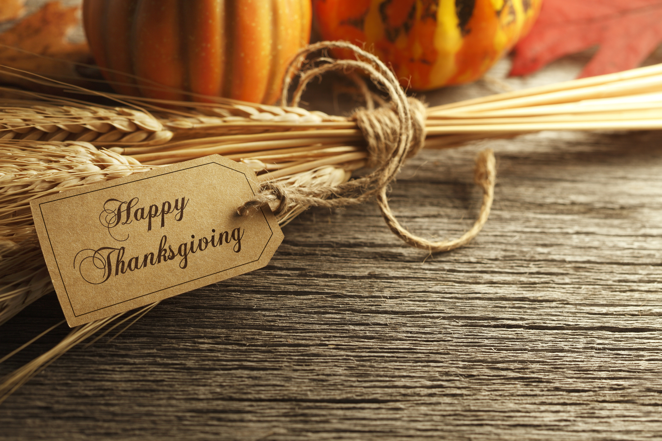 Happy Thanksgiving 2019 to Kitsap County Residents, Friends, and Family