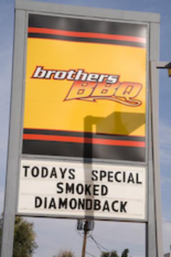 smoked-diamondback.jpg