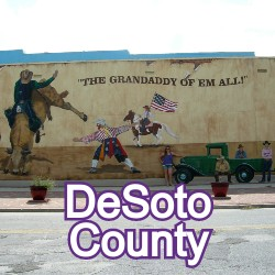DeSoto County Florida Homes for Sale