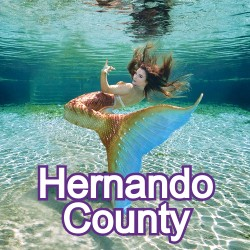 Hernando County Florida Homes for Sale