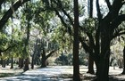Moss Park near Lake Nona