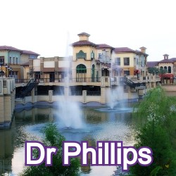 Dr Phillips Florida Homes for Sale