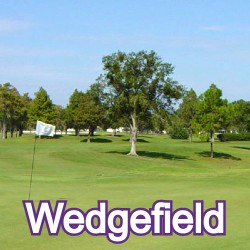 Wedgefield Florida Homes for Sale