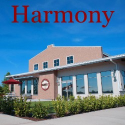 Harmony Florida Homes for Sale