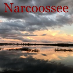 Narcoossee Florida Homes for Sale