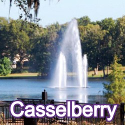 Casselberry Florida Homes for Sale