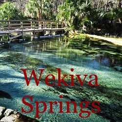 Wekiva Springs Florida Homes for Sale