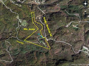 Brushy Mountains acreage for sale 90 acres