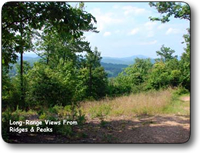 1140 acres for sale in caldwell county nc