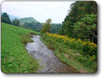 259-acres-ashe-county-nc