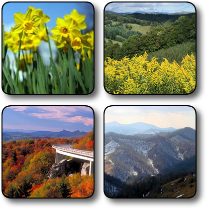 Seasons for buying land in NC