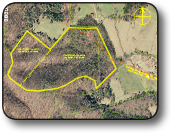 Large tract of land for sale near Wilkesboro