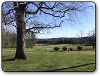 77 acres for sale in Hudson NC