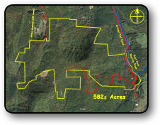 Large Acreage For Sale in Wilkes County NC