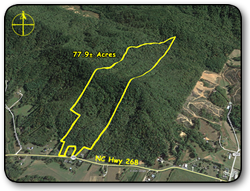 Wooded land for sale in Caldwell County NC