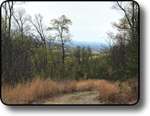 Affordable land with long-range views in Wilkes County NC