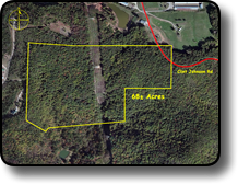 Hunting land for sale in Brushy Mountains NC