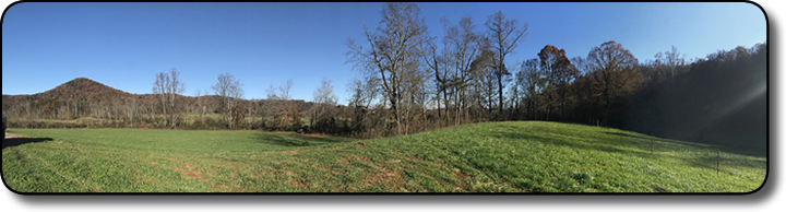 Acreage for sale with pasture in Wilkes County NC