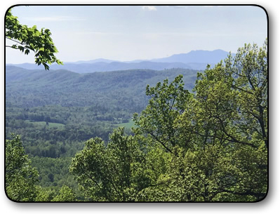 Wooded land for sale in Brushy Mountains