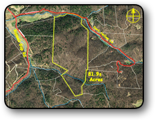 Wooded land for sale in Boomer NC