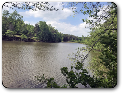 Lakefront property for sale in Alexander County NC