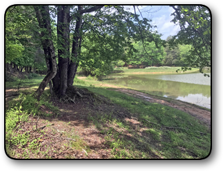 Lakefront property for sale in Taylorsville NC