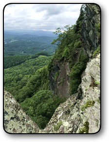 Mountain land for sale in Ashe County NC 252 acres.