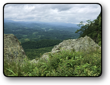 Mountain land for sale in Ashe County NC 252 acres