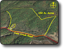 Wooded land for sale in Wilkes County NC