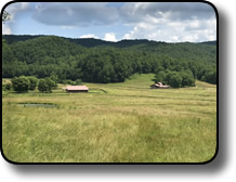 Horse farm for sale in Wilkes County NC