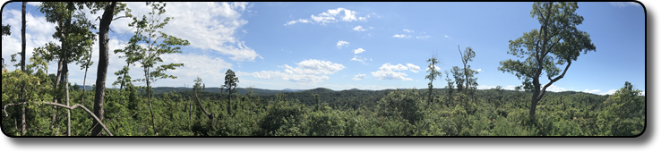 1000 plus Acres for sale in NC