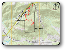 Acreage for sale in Brushy Mountains 80 Acres