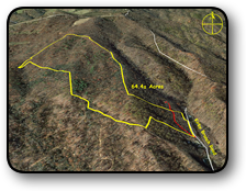 Mountain land for sale in Watauga County NC 64 Acres