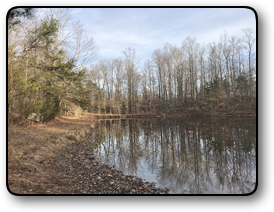 Rural Land For Sale in Davie County NC