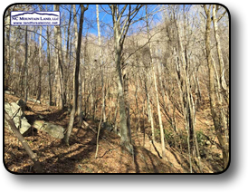 Brushy Mountains Acreage in Wilkes County NC