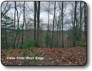 Acreage for sale on Mertie Road