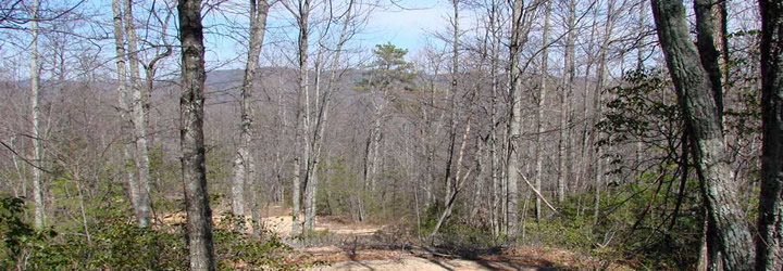 Landlocked property for sale in NC