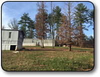 Small acreage for sale in Wilkes County NC